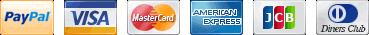 VISA, MasterCard, American Express, Discover and PayPal