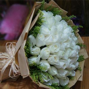 33 White Roses