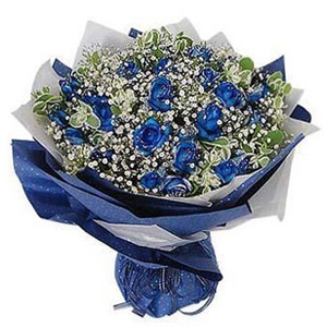 19 Blue Roses