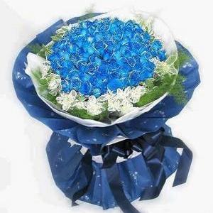 Ninety-nine blue rose - Blue Roses China