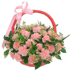 Chinese Flower - Carnations Kiss