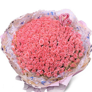 999 Roses (pink)