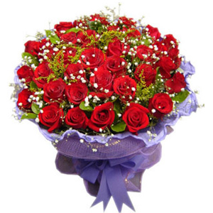33 Roses(Red)