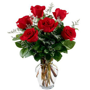 send 6 roses with a vase