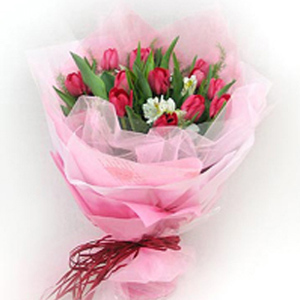 12 Pink Tulips